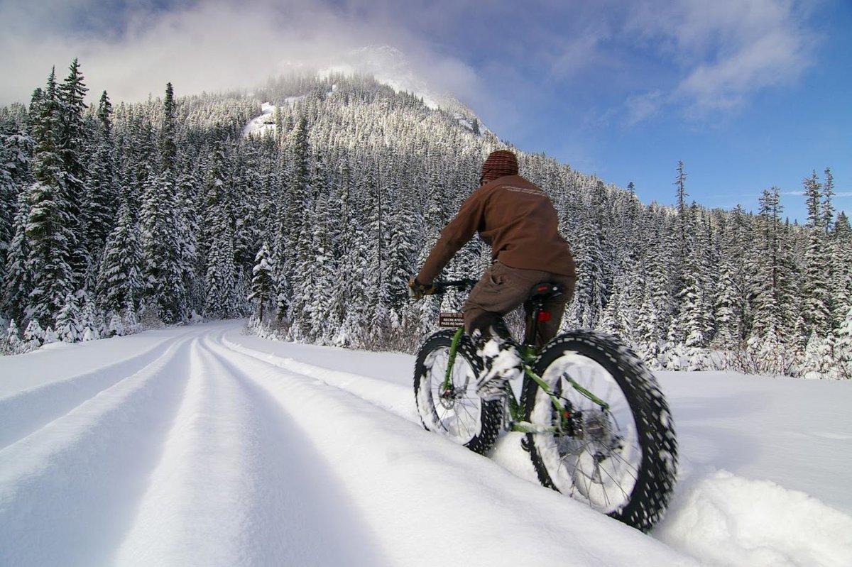 «Как ездить на велосипеде зимой?» Необычные дебаты прошли в Бресте