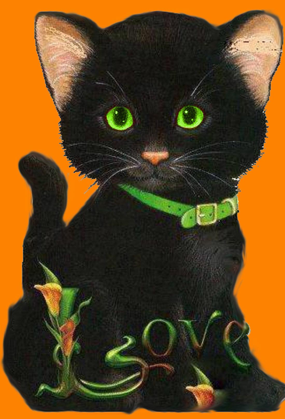 Утро красивые, анимация картинки черные кошки
