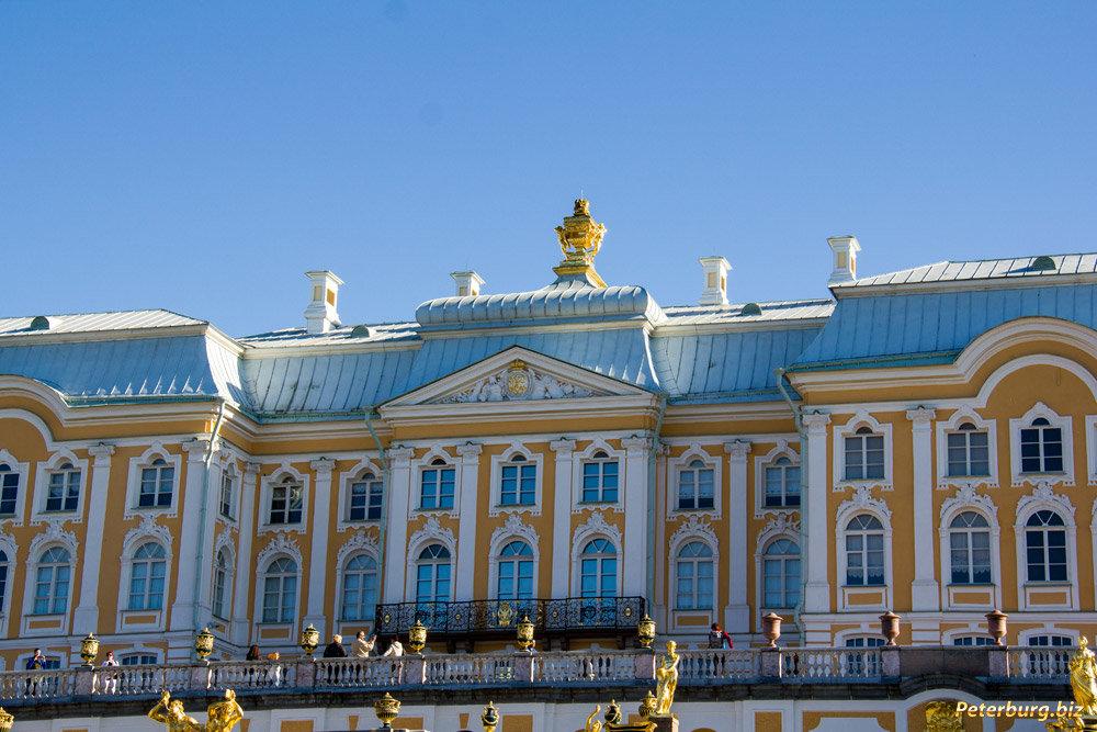 преступления были большой петергофский дворец фото больше