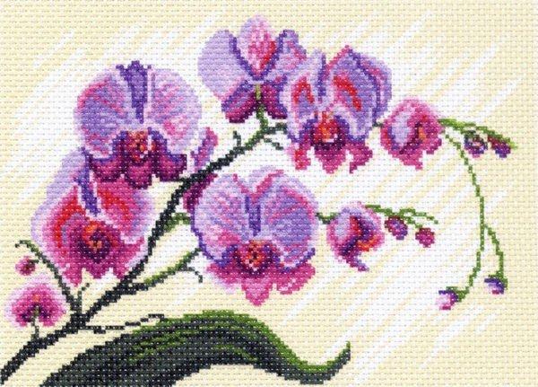 Купить канву с рисунком для вышивки крестом матренин посад