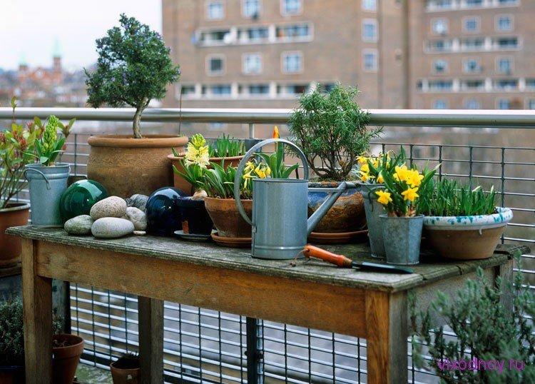 Балкон, веранда, патио в стиле экологический стиль.