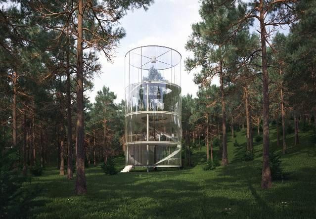 Круглый дом, построенный вокруг дерева