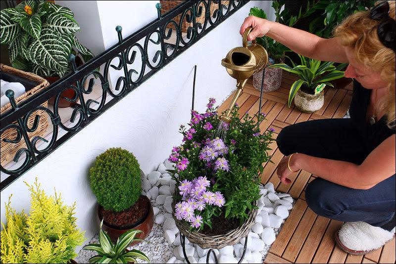 """Цветочный сад на балконе"""" - карточка пользователя sveta.ivan."""
