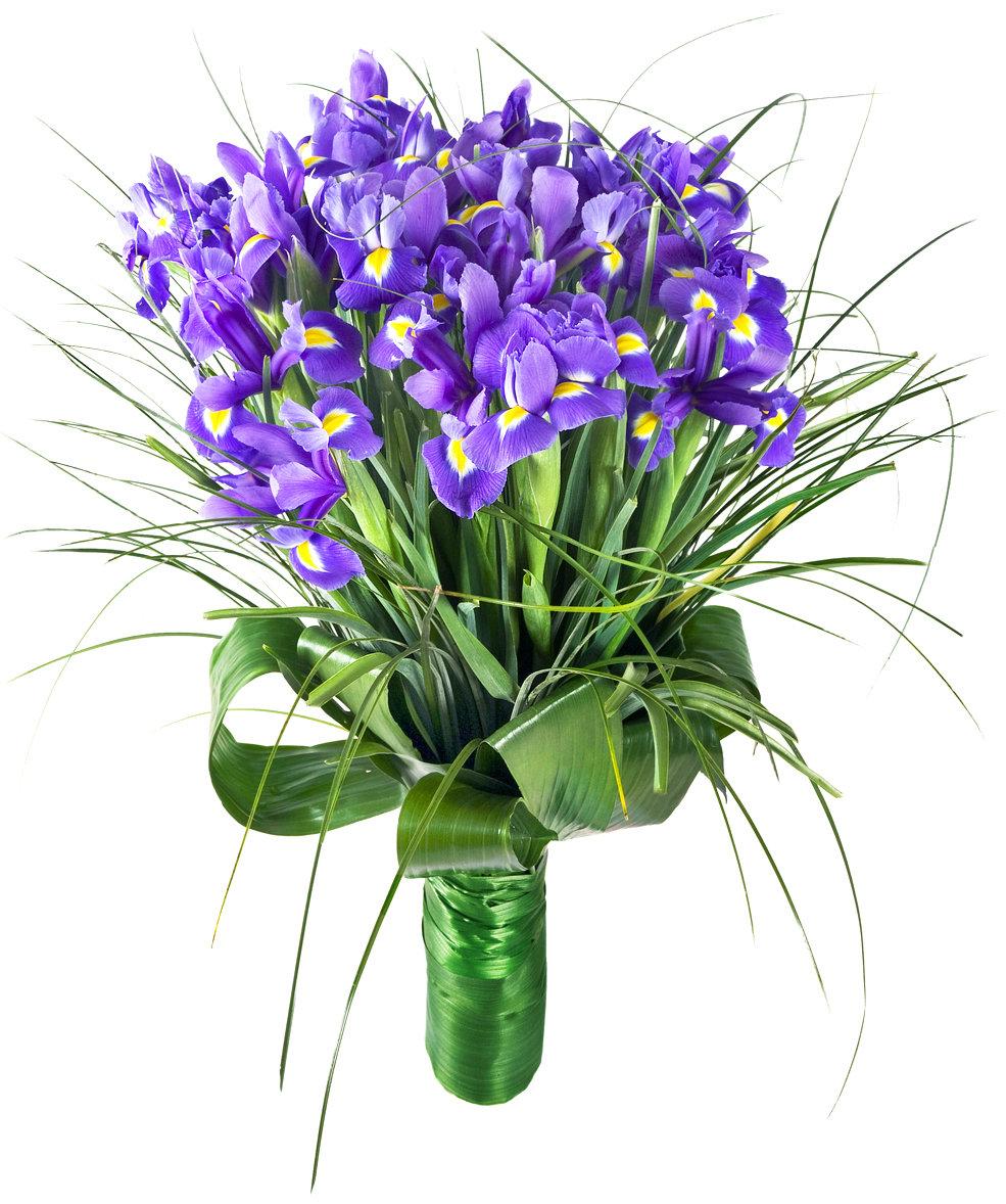 Оптом интернет, мужские поздравительные букеты цветов купить