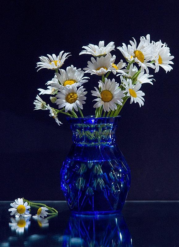 Президентский бульвар, ваза с ромашками картинки организации: Дом