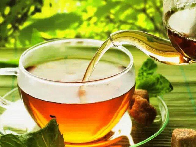 Можно пить зеленый чай при беременности