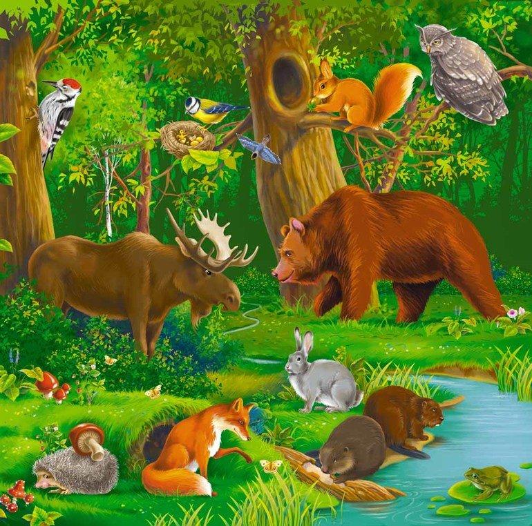Картинки живая природа для детей, тепло