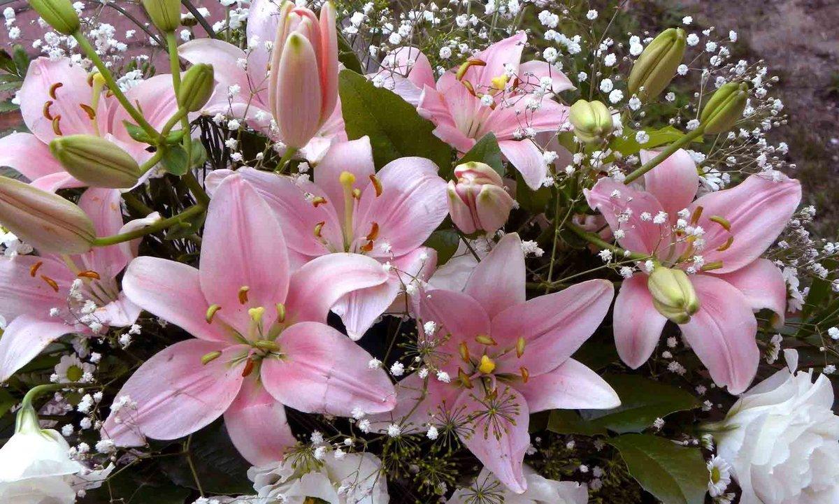 Картинки мама, открытка цветы лилии с днем рождения