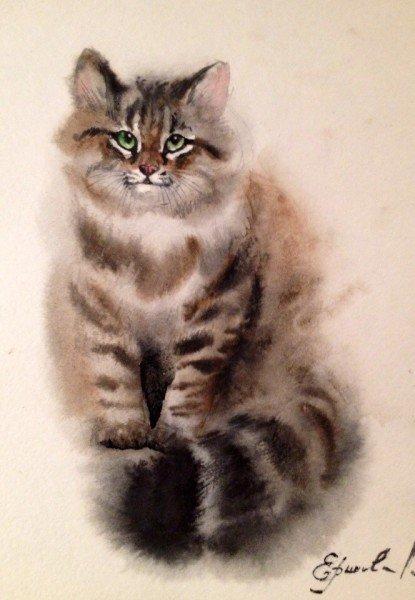 Как нарисовать сибирскую кошку акварелью