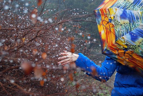 Красивые осенние картинки и фотографии дождя