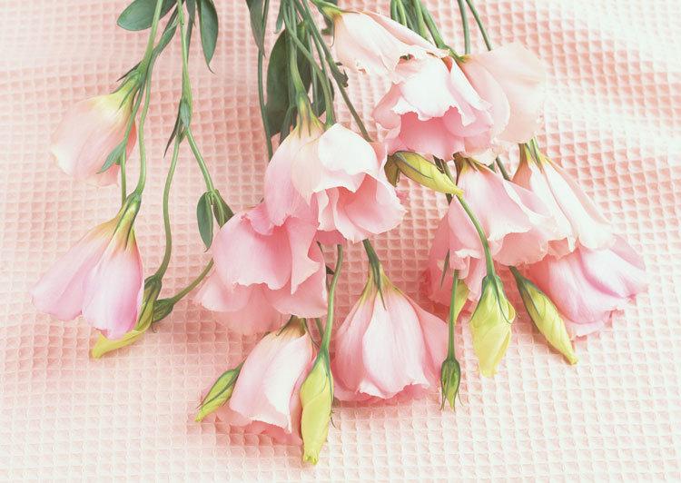 Прекрасный букет из полевых цветов
