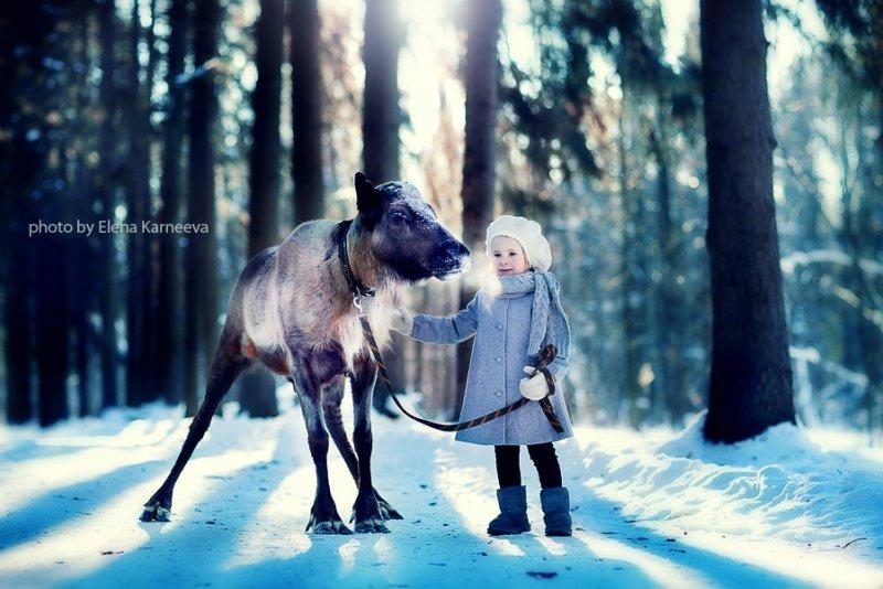 Волшебная зима: дети и животные в лесу (20 фото Елены Карнеевой)