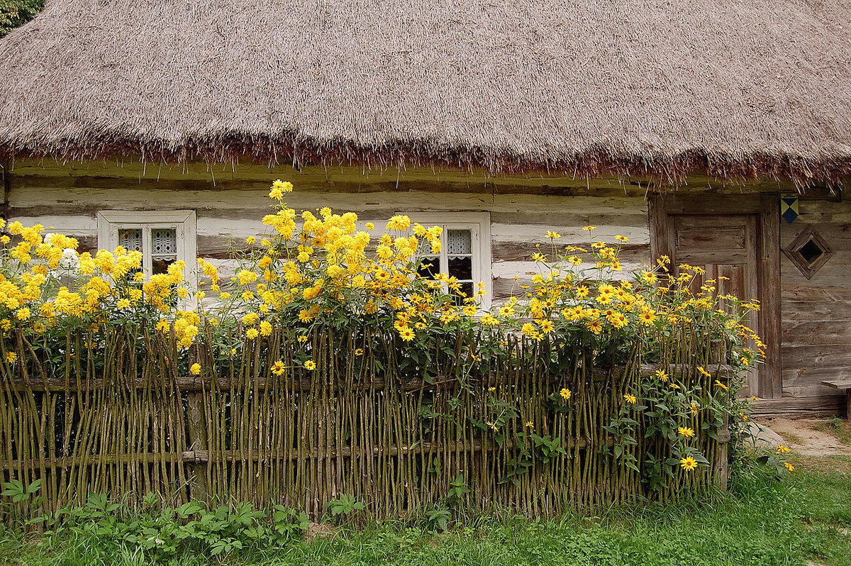 плетень на дачном участке фото