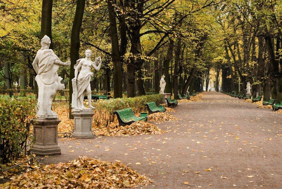 нравится, летний сад осень фото статье найдете обзор