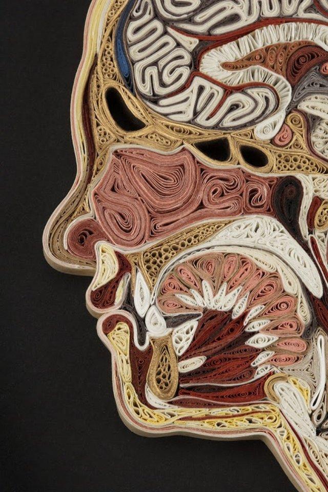анатомический квиллинг лизы нильссон (lisa nilsson)