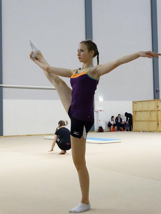 Финал ВОШ 2015 | Олимпиады для школьников