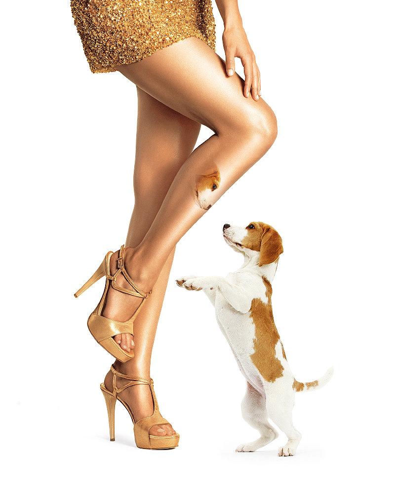 Красивые ножки картинки смешные