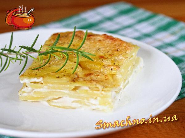 картошка гратен рецепт с фото