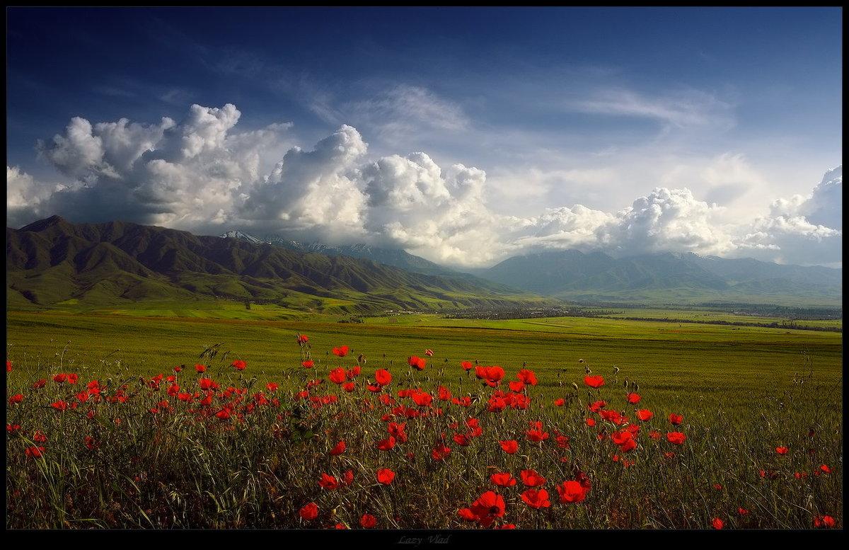 Картинки кыргызстана природы, картинки для открытки