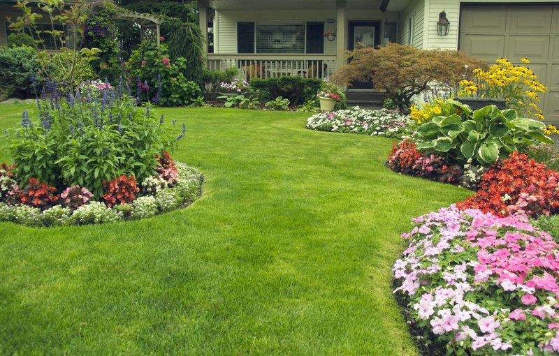 Красивый и опрятный газон своими руками