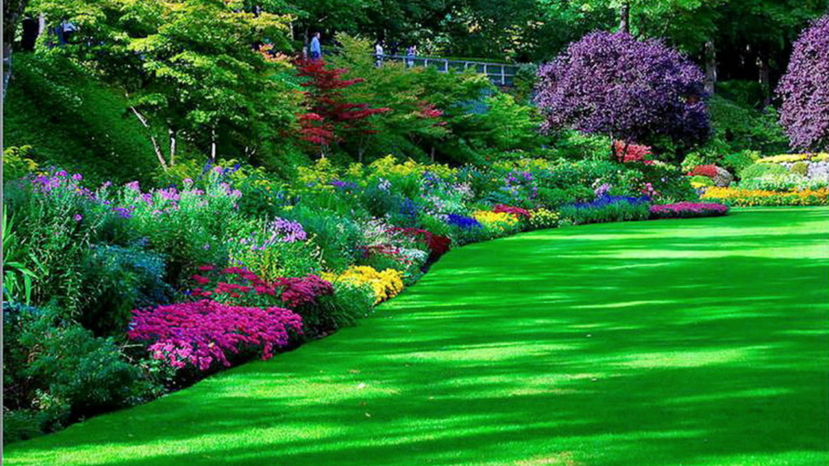 могут картинки сады и парки с цветочными клумбами на рабочий стол уже знаете