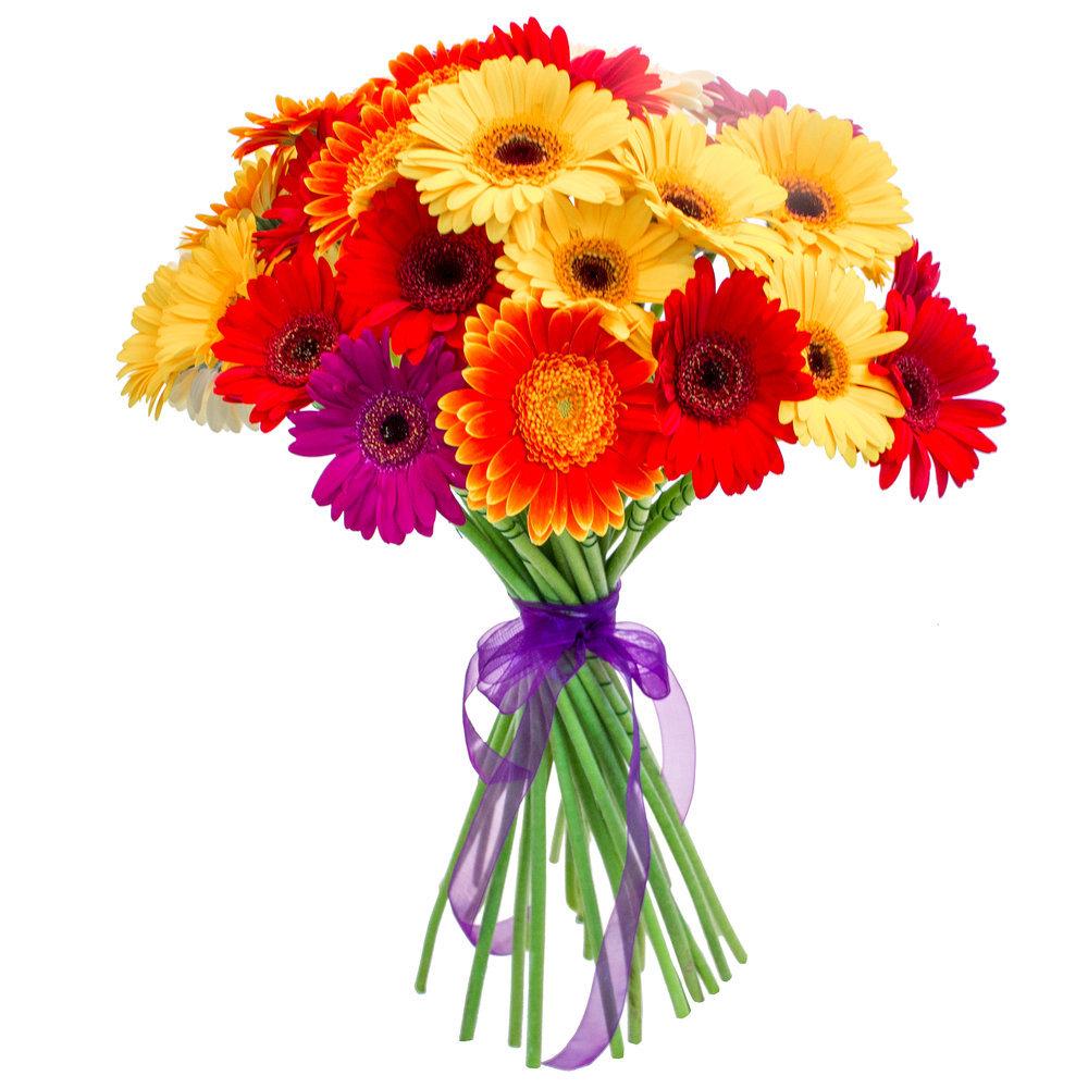 Цветы картинки букеты простые