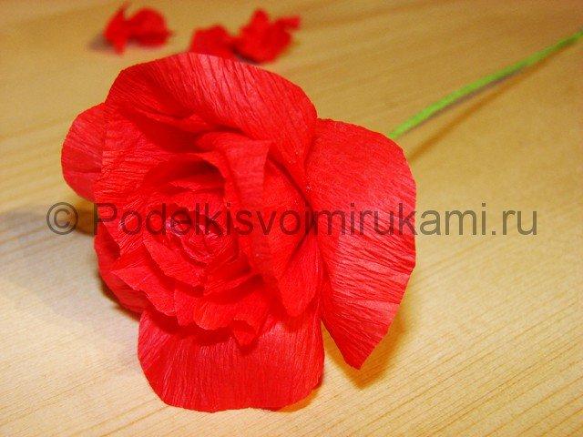 красная роза из бумаги.