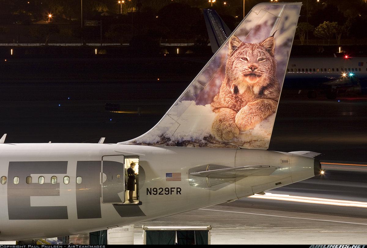 Прикольная картинка на самолете