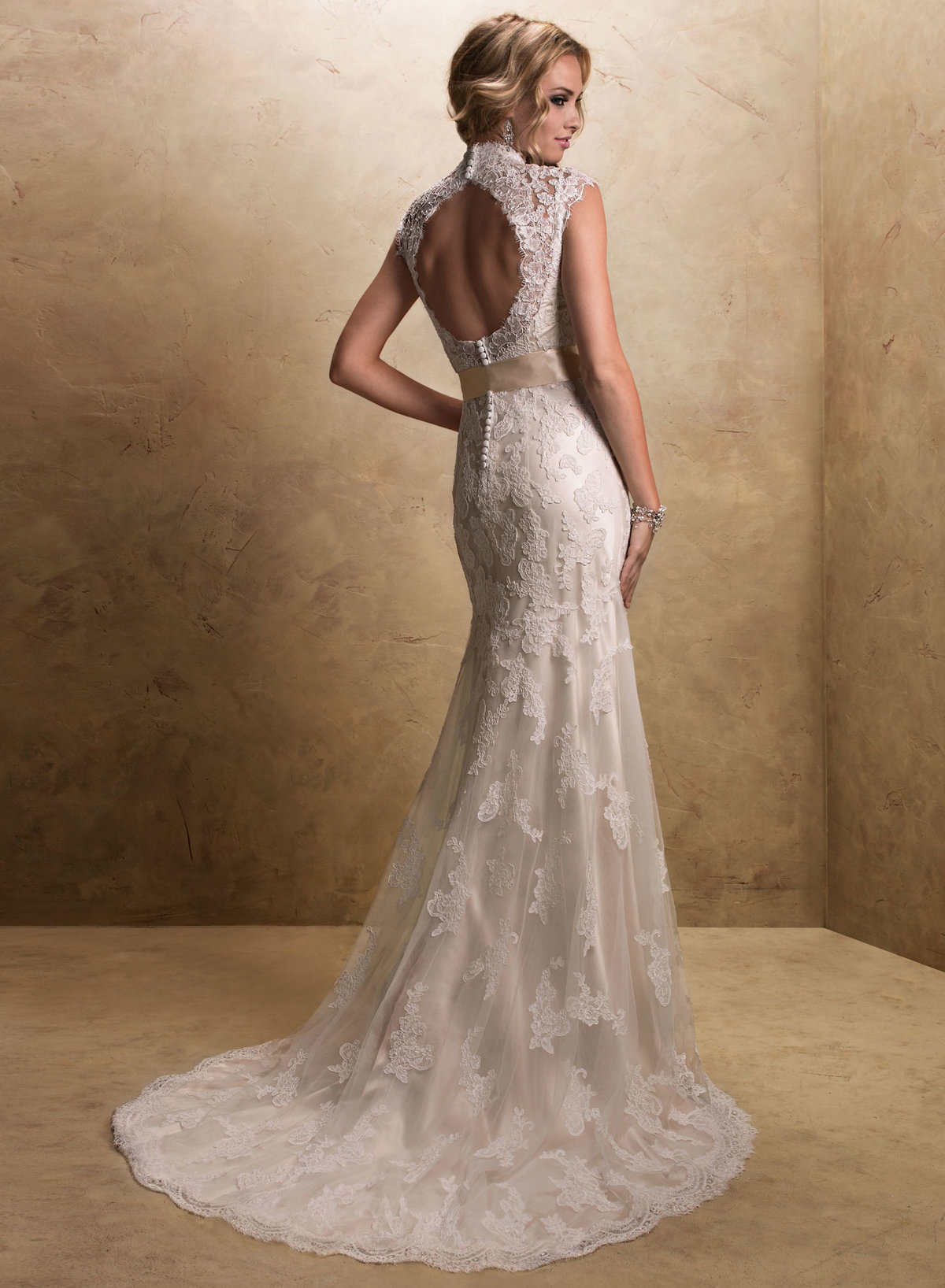 естественную свадебные платья с закрытой спиной фото используется подмороженное