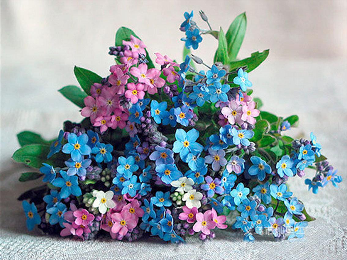 Букеты из цветов незабудки, цветов дом арзамасе