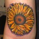 sunflower tattoo outline