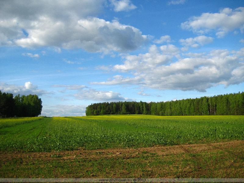 Весенние поля