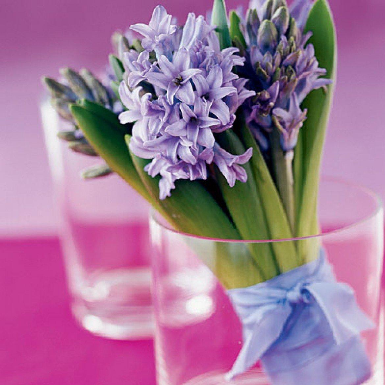 материал нужно цветы гиацинты фото букеты картофель