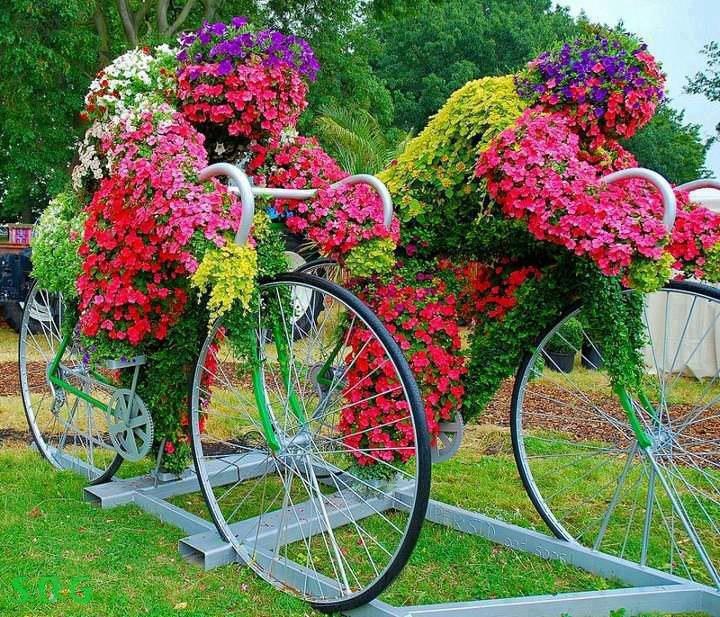 Для любимой, доставка цветов на дачу