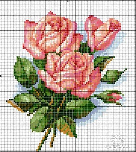 Собрала картинки схем красивых цветов для вышивки крестом. Зачем покупать  дорогие готовые наборы для вышивки f78fae05fe73c