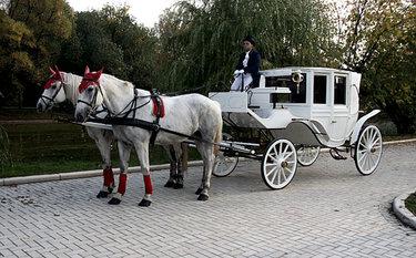 картинки кареты с лошадьми