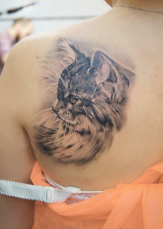 фото тату свисающий котик потому, что многим