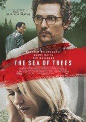 Американец-самоубийца знакомится с японцем, потерявшимся в лесу рядом с горой Фудзи, и вместе они пытаются отыскать дорогу.