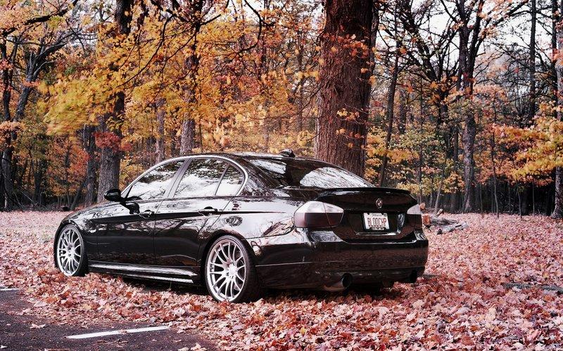 Осень, черный  БМВ, листья.