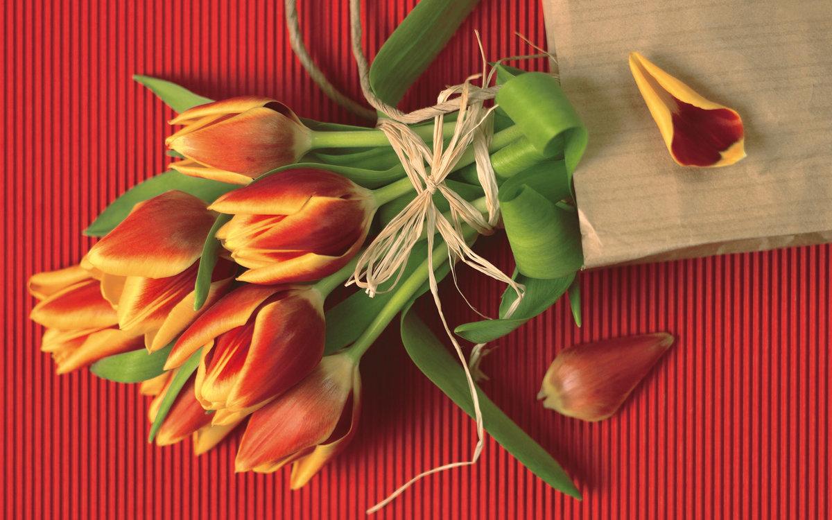 Открытки на 8 марта с хорошим качеством фото, открытки