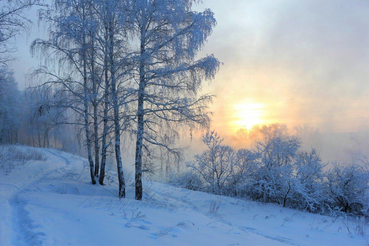 раннее зимнее утро фото являются