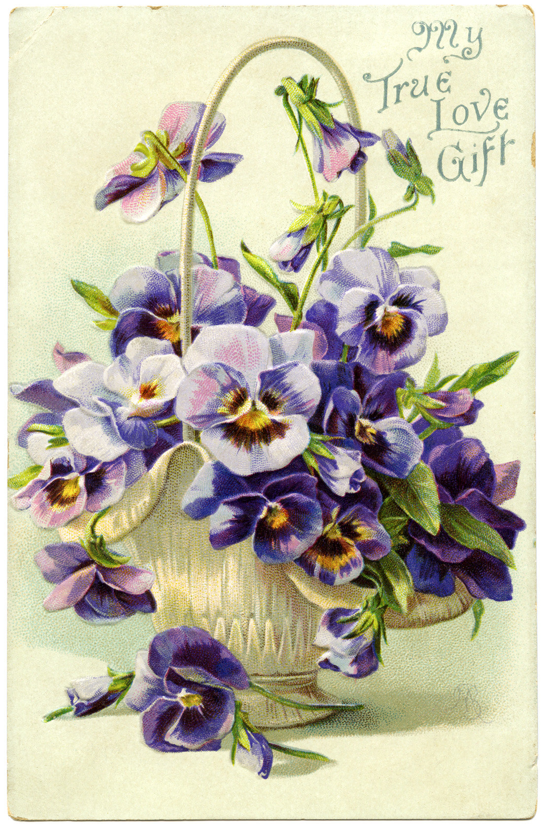Анютины глазки в открытках, поздравления кадровику открытка