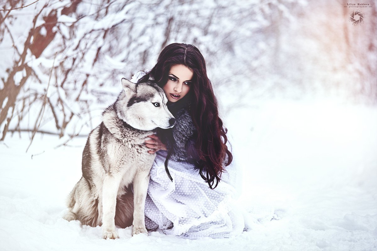 зимняя фотосессия с маламутами идеи фото