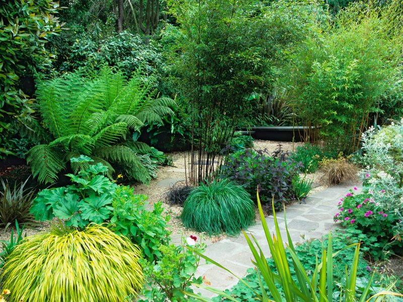 Садовые дизайны. Варианты и примеры для вас)