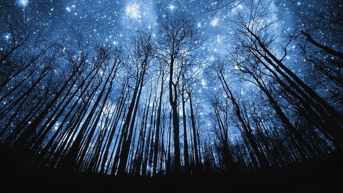 Картинки ночь звезды, красивые