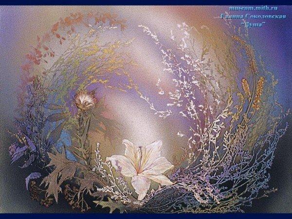 лилия в кустиках