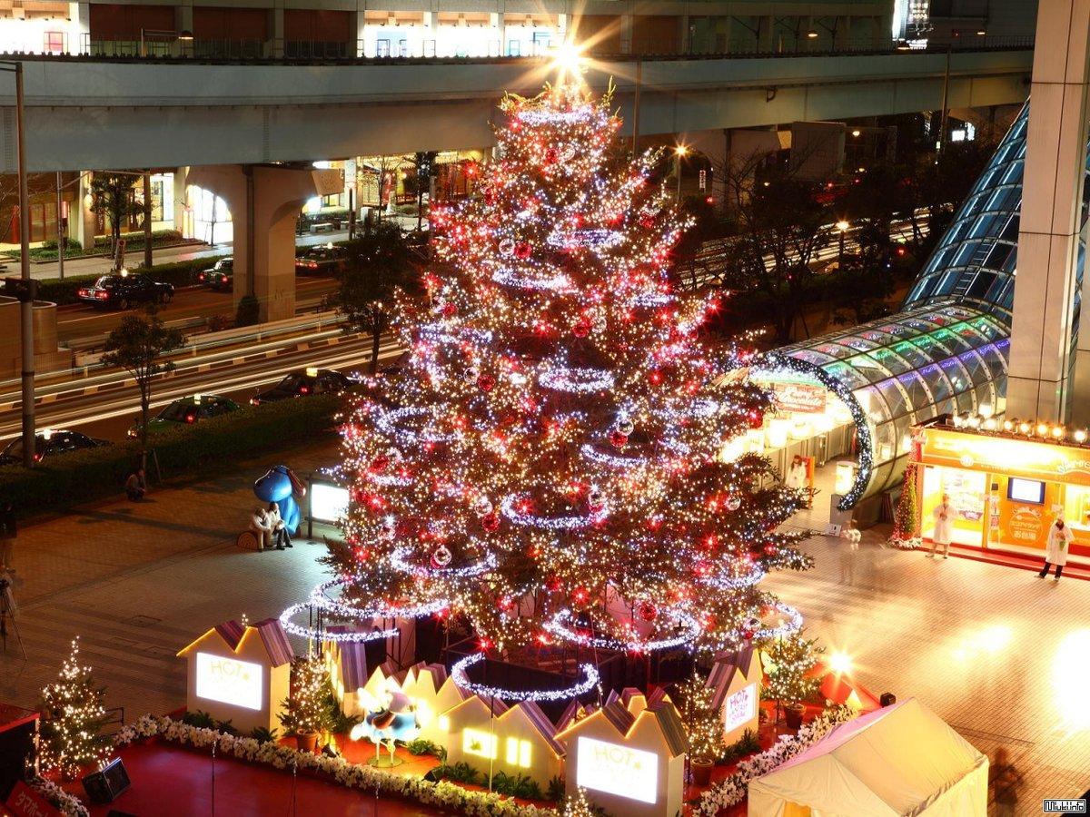 это фото новый год токио кольцевую лампу