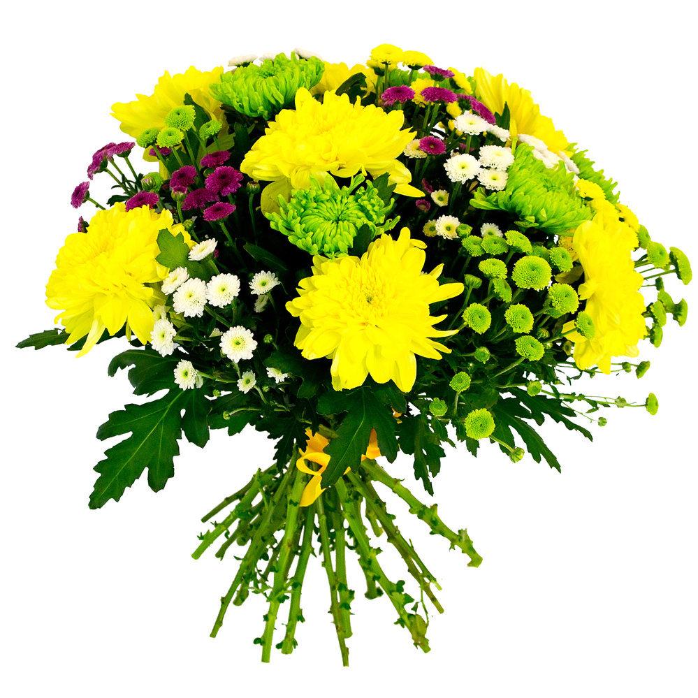 Купить живые цветы хризантемы в минске