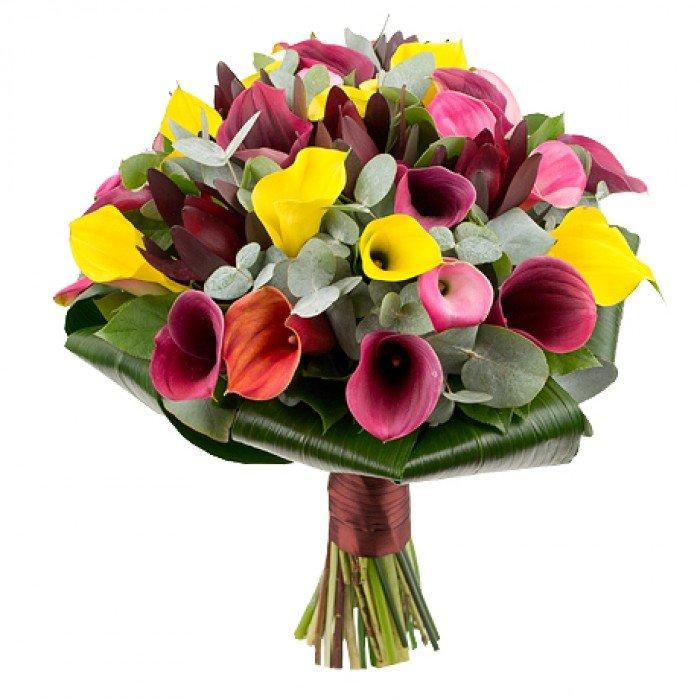 Купить букеты из цветов каллы, доставка