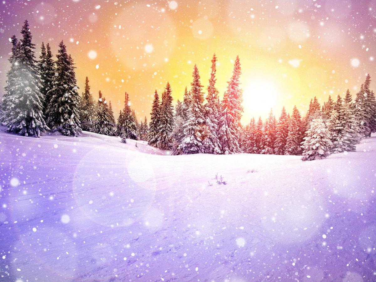 Историей алиса, картинки сказочный лес зимой
